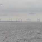 A wind farm on the water..